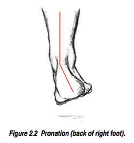 Picture of pronation of foot