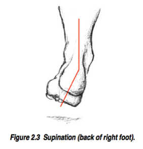 foot biomechanics supination