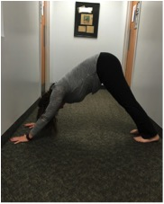 Yoga | Downward Facing Dog