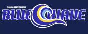 BlueWave-logo