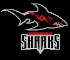 Shark-logo